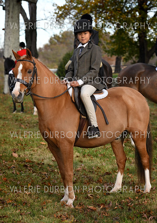 Middleburg Hunt Opening Meet ~ Nov 4, 2017