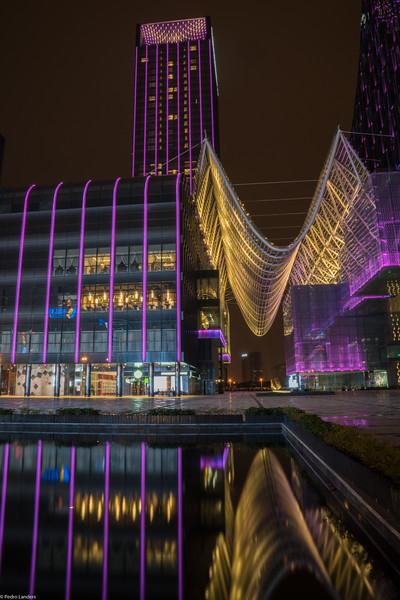 Suzhou Hotel Architecture 2