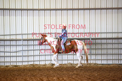 fri 10 - RANCH HORSE - 17 & UNDER