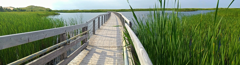 Prince Edward Island Photography 46.jpg