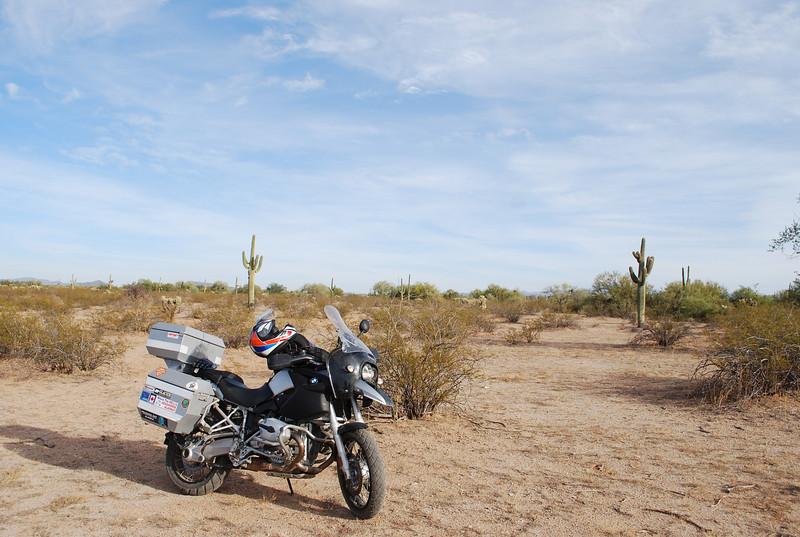 Nov 22, 2008 Moto 018.JPG