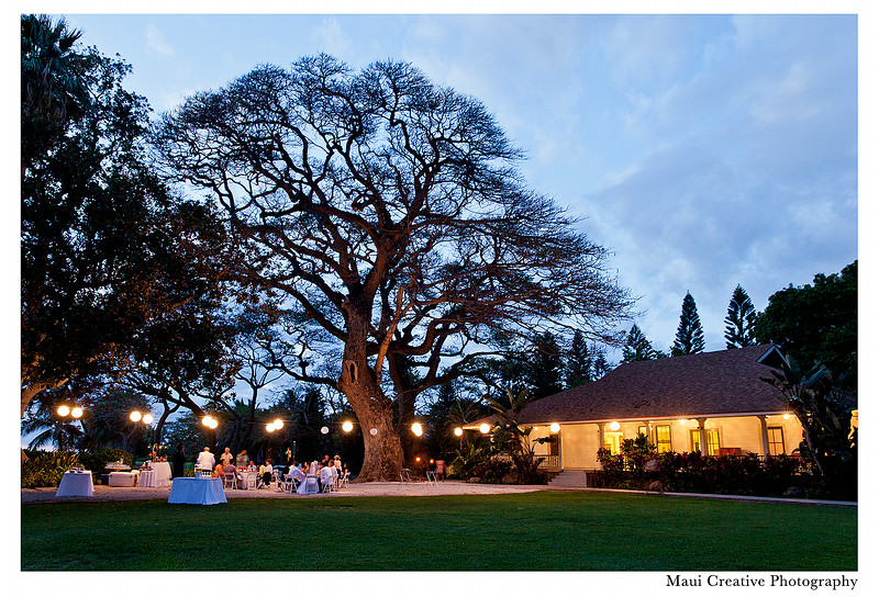 Maui-Wedding-Photographers_Olowalu-Plantation-House_247.jpg