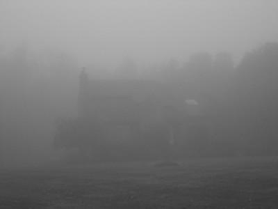 Fog on Apple Hill