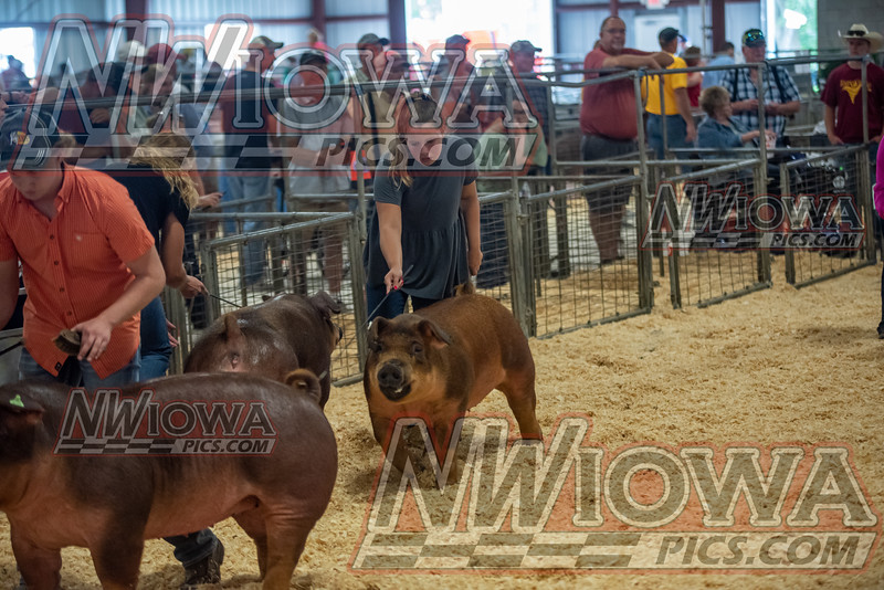 Clay County Fair - Day 1 - 9 - 11 - 21