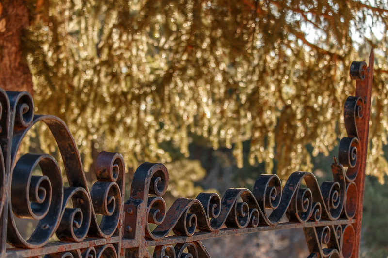 Fences-02