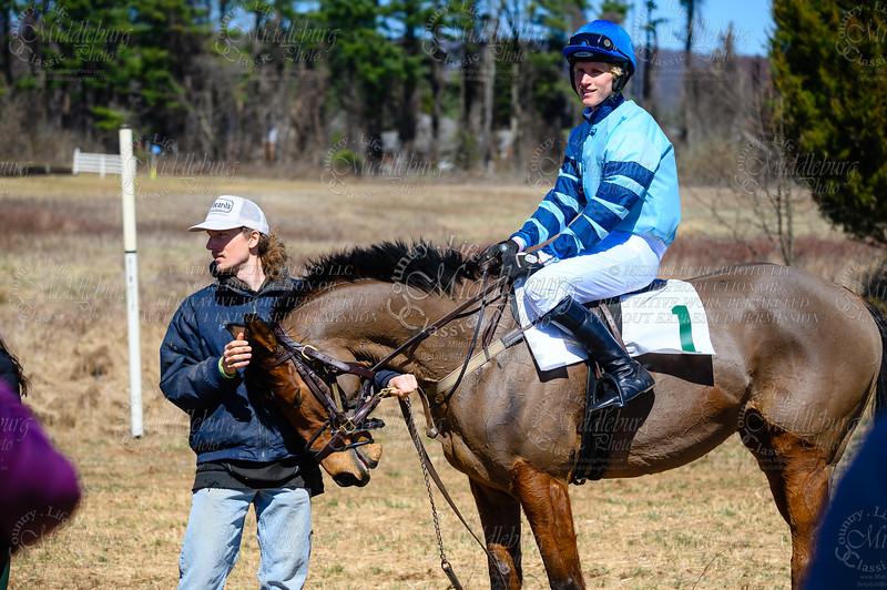 Race 2 Amateur/Novice Rider Hurdle