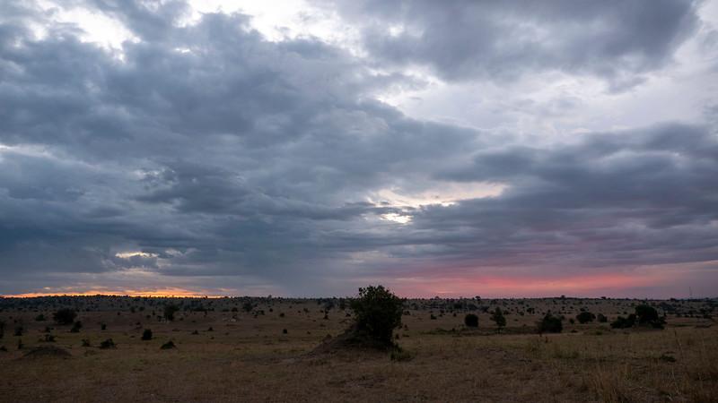 Tanzania-Serengeti-National-Park-Safari-04.jpg