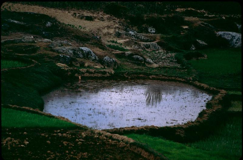 Madagasgar1_013.jpg