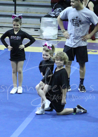 20140301 Holbrook Mini Partner Stunt