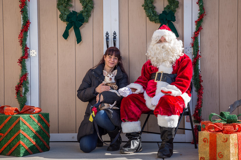 Pet Pictures With Santa-62.jpg