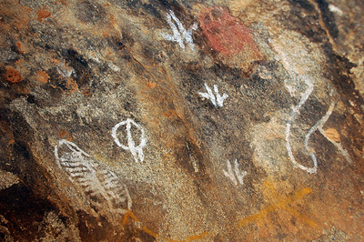 No dragon, just these amazing Aboriginal cave paintings. I think the three same symbols in the middle is a kangaroo hopping.