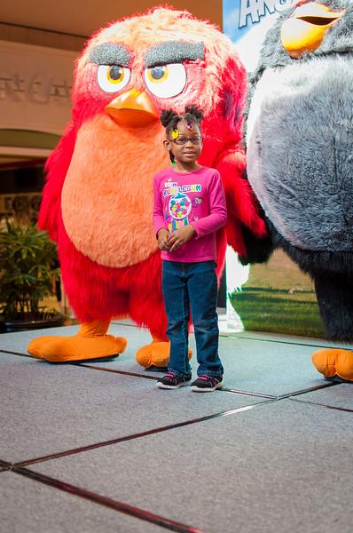 Angry Birds StoneCrest Mall 103.jpg