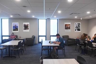 Library Walls May 2019
