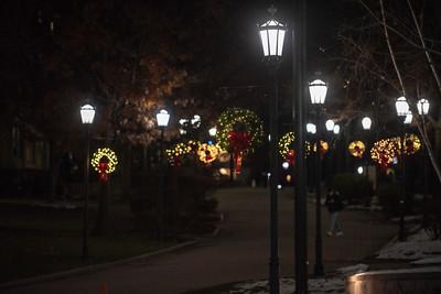 tree lighting 19