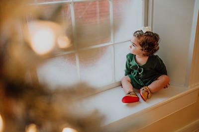 Edwards Family Christmas Mini