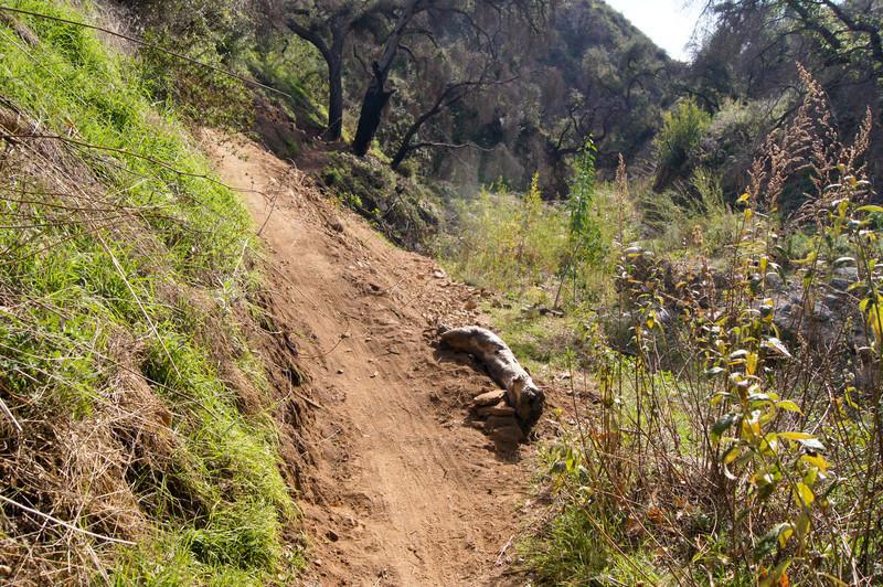 201201291595-El Prieto Trailwork.jpg