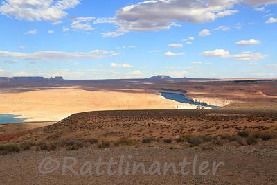 Northern Arizona and Saguaro 2021