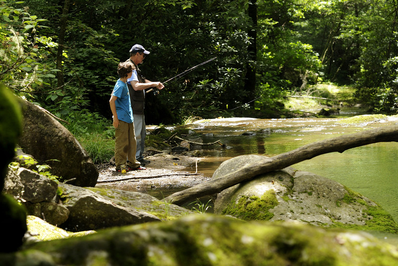 A man teaches his grandson to fish at Rocky Fork State Park in Flag Pond, TN on Saturday, June 13, 2015. Copyright 2015 Jason Barnette