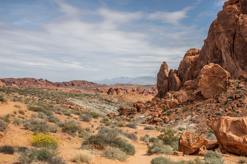 20190405_valley of fire_03-28.jpg