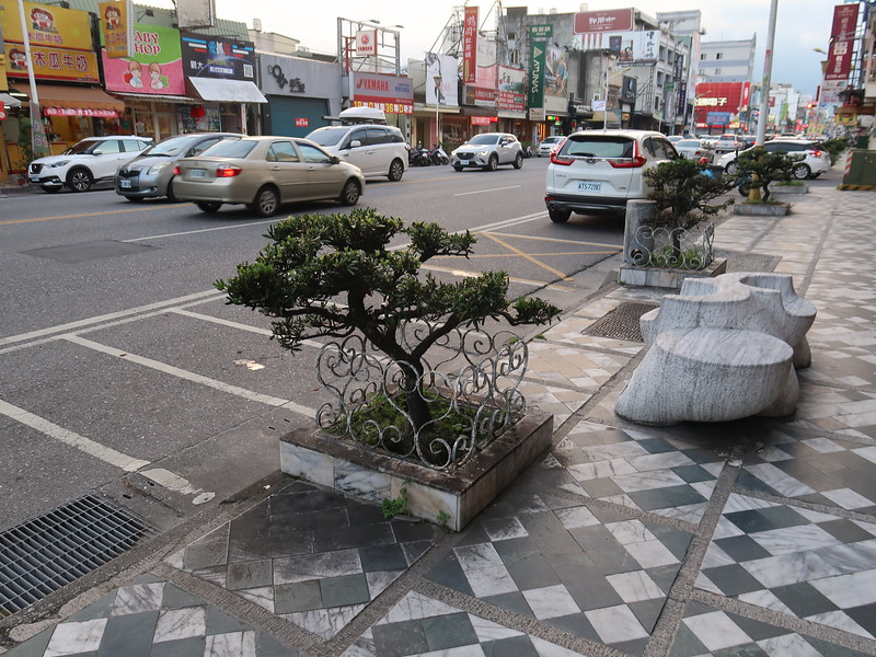 IMG_8870-bonsai-trees.JPG