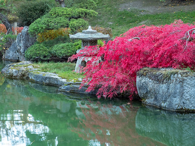 Japanese Gardens Fall'18