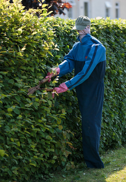 Hedge Trimmer (37 Stow Road)_9229590591_o copy.jpg
