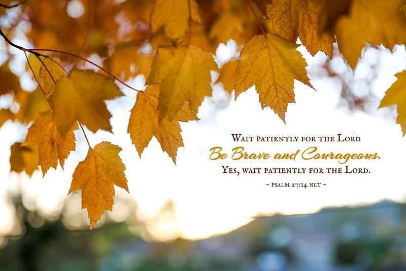 19_Psalm27-14_NJ_2019-10-26.jpg