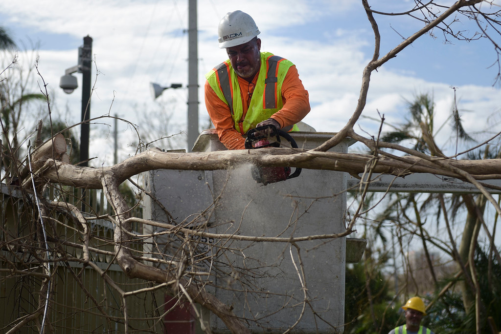 . A Liberty Cable worker cuts branches to restore fiber optic lines three days after the impact of Hurricane Maria in Carolina, Puerto Rico, Saturday, Sept. 23, 2017. A humanitarian crisis grew Saturday in Puerto Rico as towns were left without fresh water, fuel, power or phone service following Hurricane Maria�s devastating passage across the island. (AP Photo/Carlos Giusti)