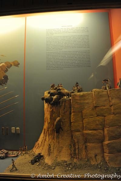 2013-12-30_AMNHMuseum@NewYorkNY_50.jpg
