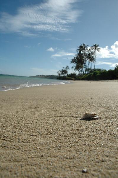 Hawaii - Kahala Beach-107.JPG