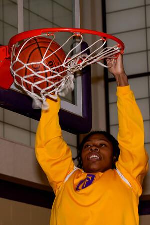 2014 Basketball posed