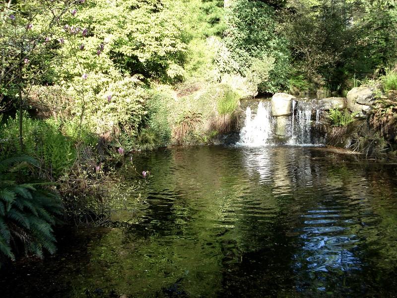 stanley-park_1804572446_o.jpg