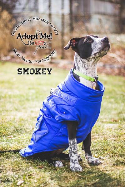 Smokey4.jpg