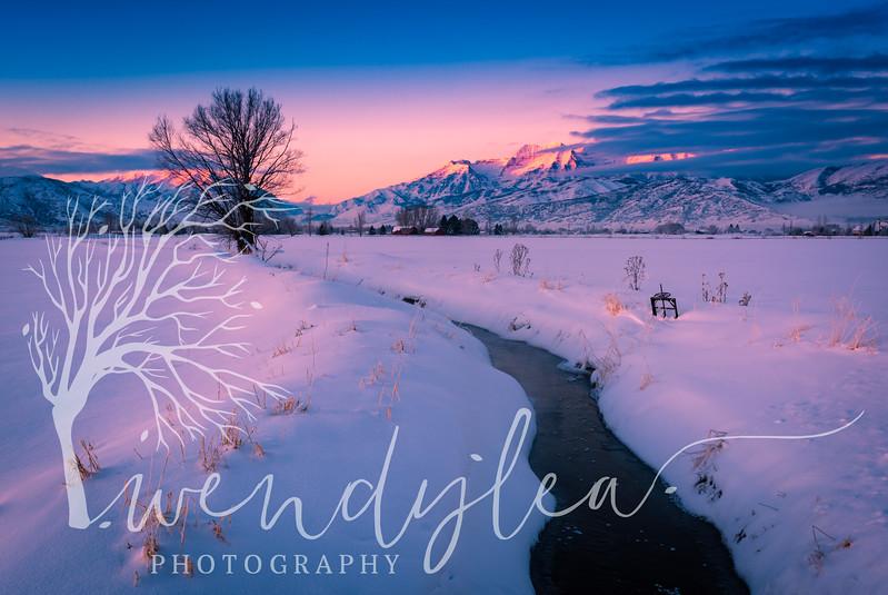 wlc Winter scene 012717January 27, 2017-7-Edit.jpg