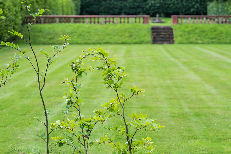 Hob Green garden-66.jpg