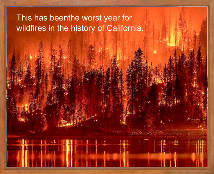 15._worst_year_for_wildfires.jpg