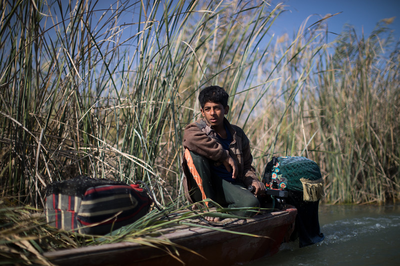 A boy in a mashoof canoe in the marshes.