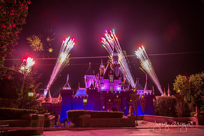 2013 Disney Vacation 2: FireWorks