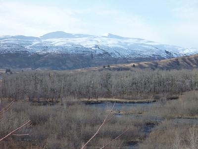 Jarrod Alaska