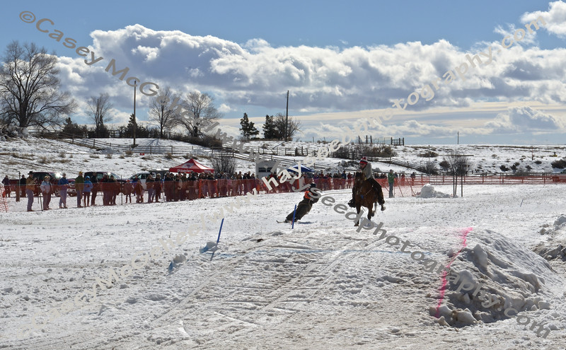 Ski Joring 2015