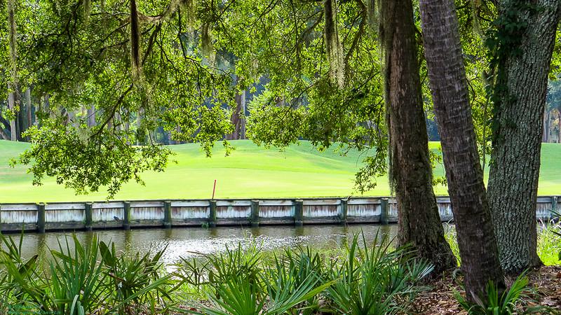 The Green at Kiawah, SC
