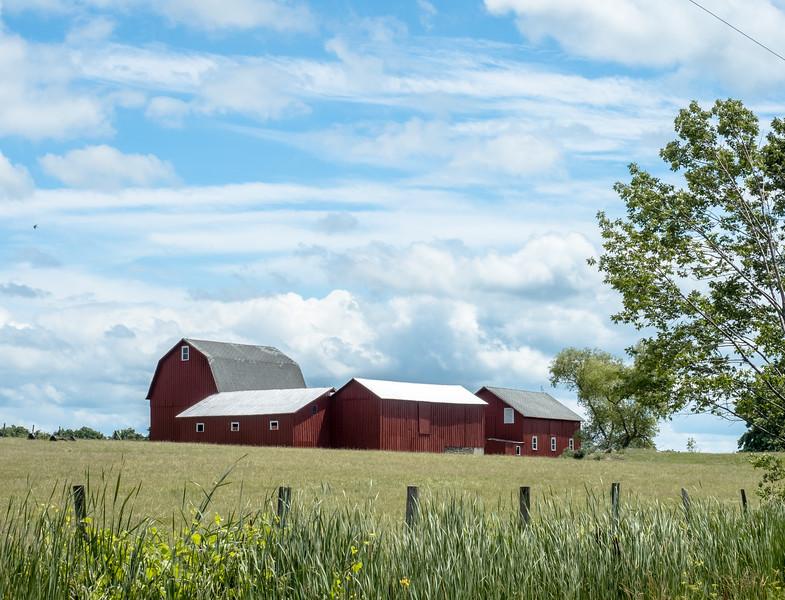 89 July 6 Barn complex iii -1.jpg
