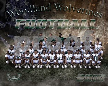 Woodland football Team 11-30-16