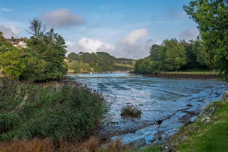 Devon-England-25.jpg