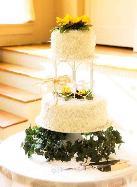 Backlit cake.jpg