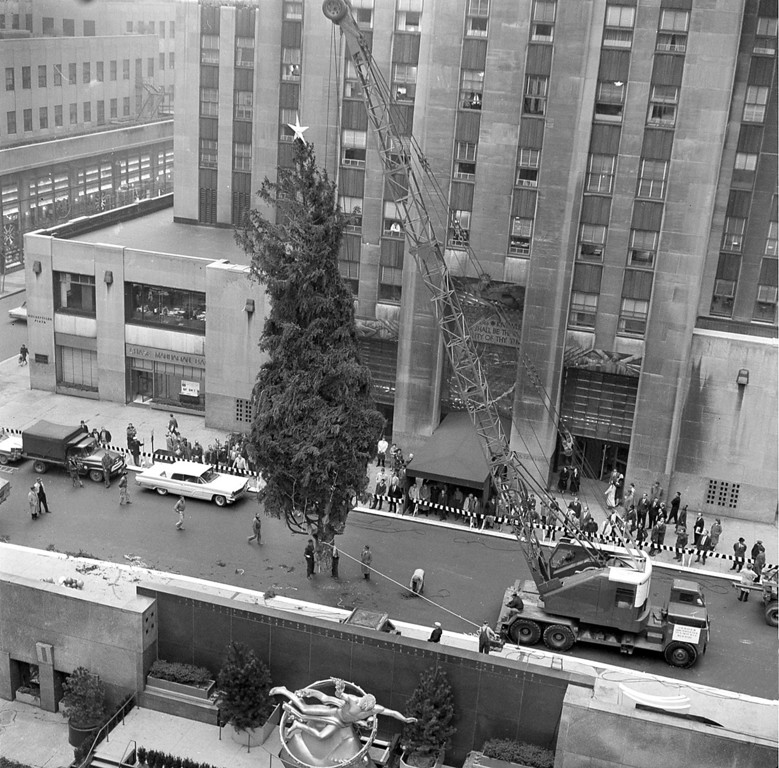 . A 65-foot Norway Spruce, the 27th annual Christmas tree at Rockefeller Center, is lowered into place at Rockefeller Plaza in New York City, Nov. 29, 1960.  The tree, which came from Harford, Pa., and weighs about two-and-a-half tons, will be lit Dec. 8.  In the foreground is the statue of Prometheus overlooking the ice skating rink.  (AP Photo)