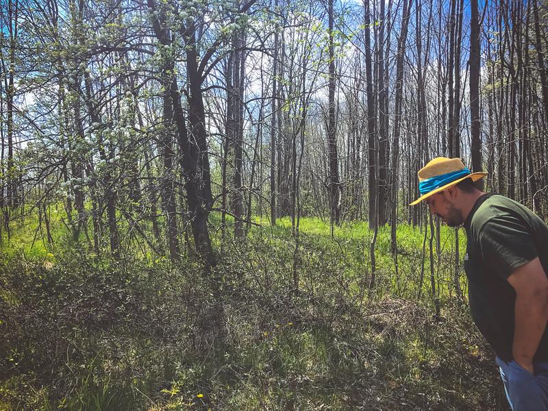 zach in forest.jpg