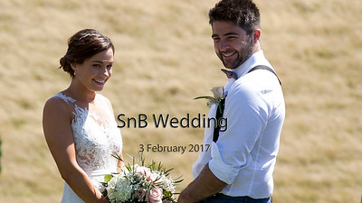 Feb 17 - SnB Wedding (stop motion)