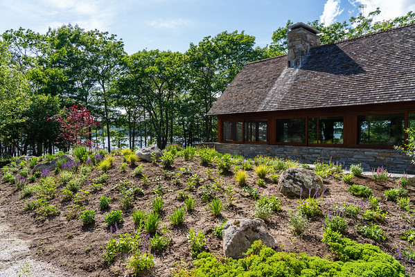 Maine Perennial Garden 2021