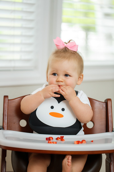 Make_My_Day_Bib_Penguin_lifestyle (55).JPG